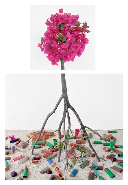 , 'Bougainvillea & Shotgun Shells,' 2017, Carrie Haddad Gallery