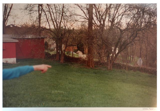 , 'Untitled (Kentucky),' 1983, Carolina Nitsch Contemporary Art