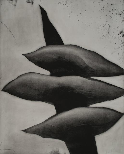 , 'Numerosis,' 2004, Galerie D'Este