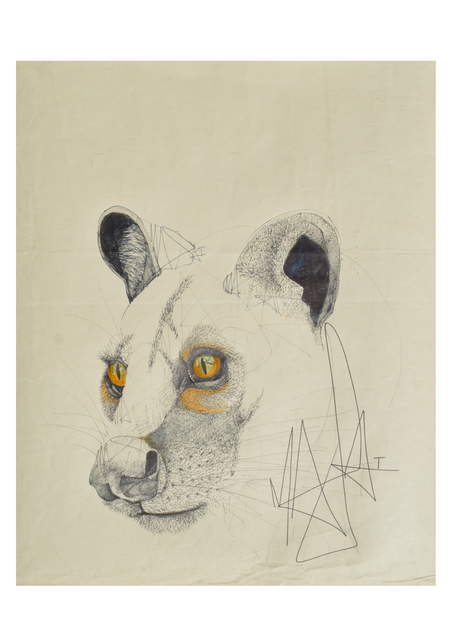 Louis Masai, 'WWF Series - «The stare into extinction...»', 2019, NextStreet Gallery