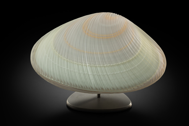 , 'Cockle (Cockle Shell),' 2017, Stonington Gallery
