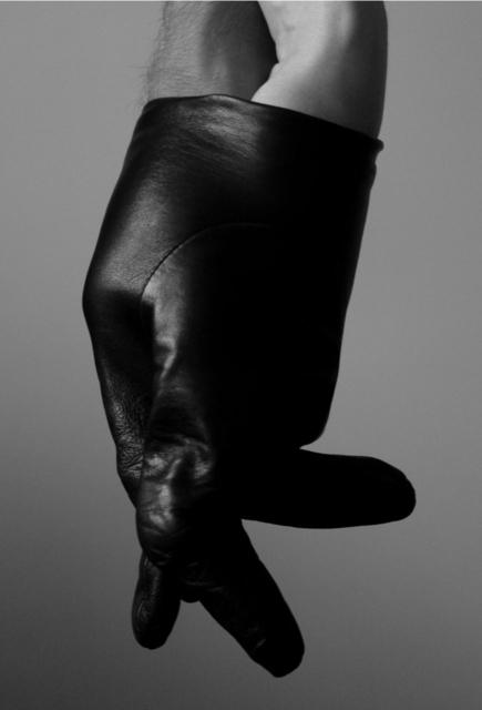 , 'Untitled (Glove),' 2009, Galerija Gregor Podnar