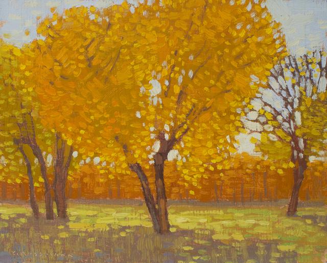 , 'Cottonwoods in Autumn Light,' 2019, Maxwell Alexander Gallery