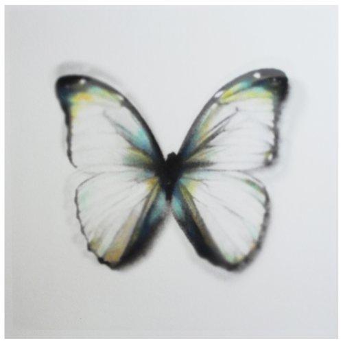 , 'Butterfly brux 02,' 2016, Shazar Gallery