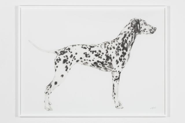 , 'One,' 2018, Underdogs Gallery