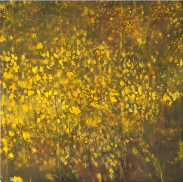 , 'Light Field III,' 2013-2014, Seager Gray Gallery