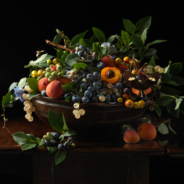 , 'Blueberries and Apricots,' 2013, Robert Klein Gallery