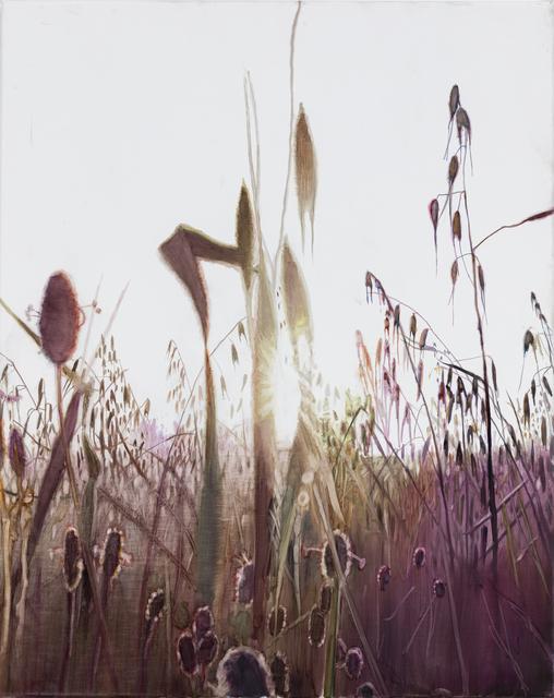 Vibeke Slyngstad, 'Shuafat VI', 2019, Painting, Oil on Canvas, Kristin Hjellegjerde Gallery