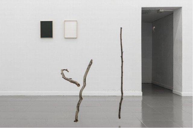 Anna Dot, 'The parable of the blind', 2020, Installation, Wooden logs and nylon thread, Bombon Projects
