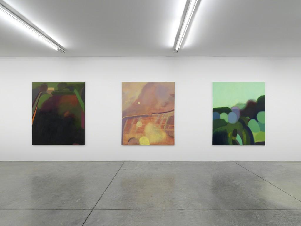 """Phoebe Unwin """"Field"""", Exhibition view Collezione Maramotti, 2018, Ph. Dario Lasagni."""
