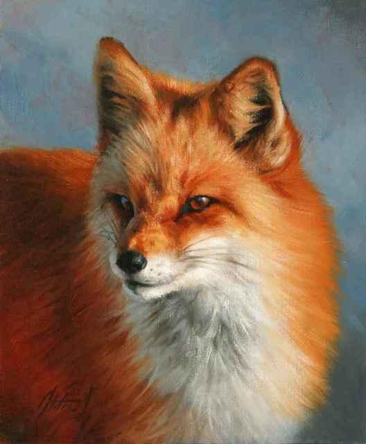 , 'Fox Portrait,' , Sorrel Sky Gallery