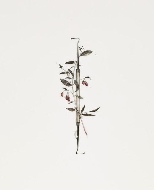 , 'Asclepius,' 2013, VICTORI+MO CONTEMPORARY