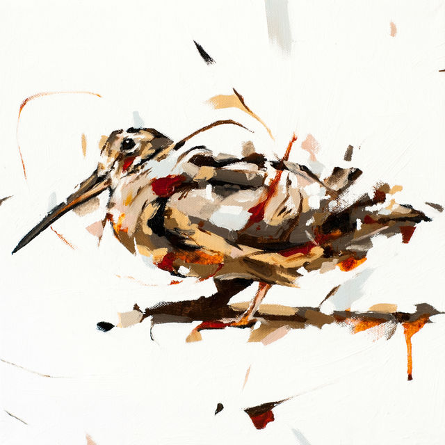 , 'Woodcock,' 2015, Abend Gallery