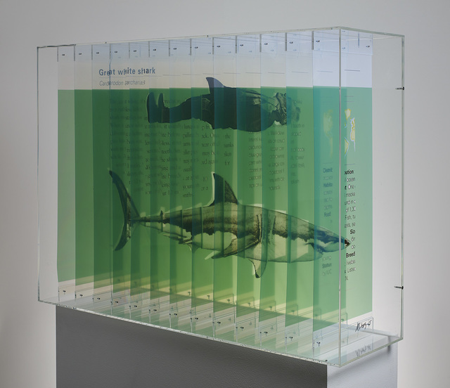, 'Great White,' 2015, Galerie Frank Pages