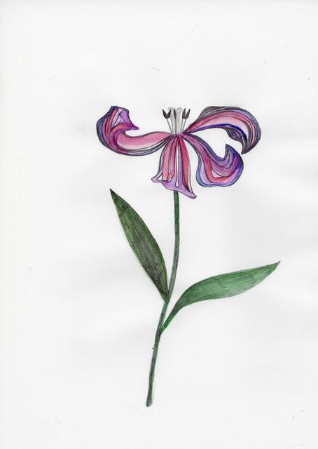 , 'Tulip Pink,' 2015, Deweer Gallery