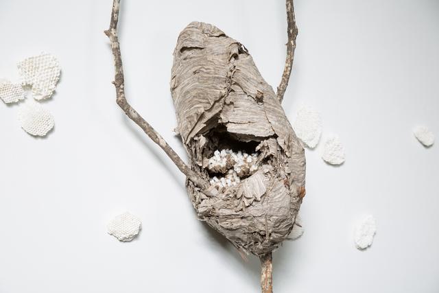 , 'Swarm,' 2017, Jen Mauldin Gallery