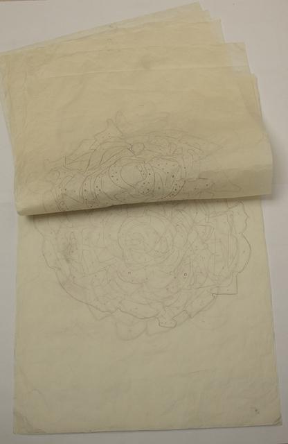 , 'Plano mandalas,' 2012, Isabel Aninat