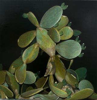 , 'Cactus de noche,' , Sala Parés