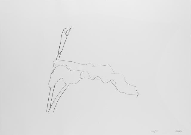 , 'Leaf IV,' 1978, Susan Sheehan Gallery