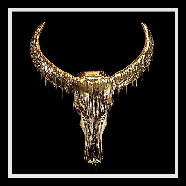 Angela Morris-Winmill, 'Dripping Gold Chinese Water Buffalo Skull on Black Diamond Dust', 2019, M1 Fine Art