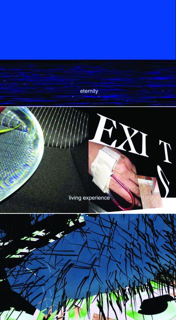 , 'Exist,' 2016, Janet40