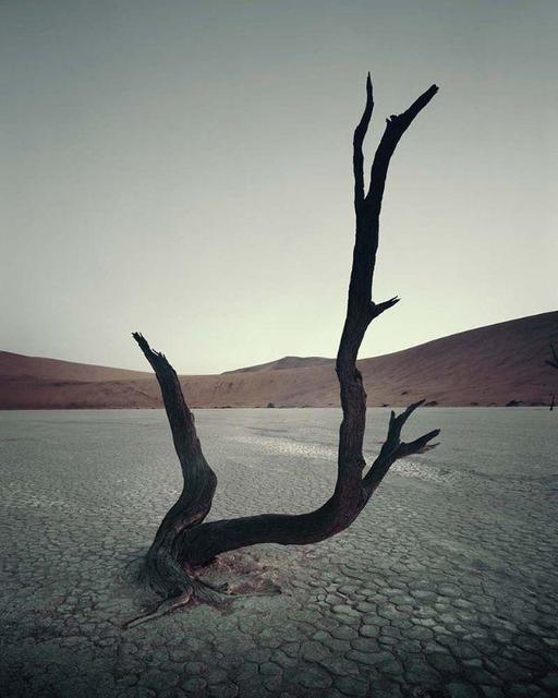 , 'IV 470 - Dead Vlei, Sossusvlei Namibia,' 2011, AbrahamArt