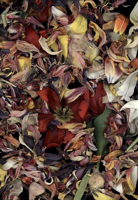 , 'Stockage 124.05,' 2018, Galerie Andreas Binder