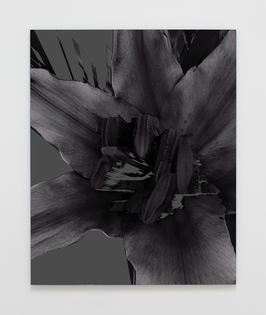 , 'Sometimes You Forget My Name (Lily Stargazer),' 2016, VARIOUS SMALL FIRES