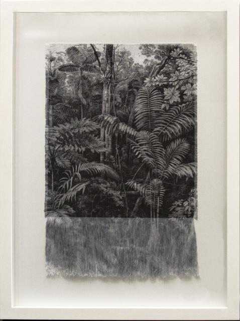 , 'Selva Antigua ,' 2017, Galería La Cometa
