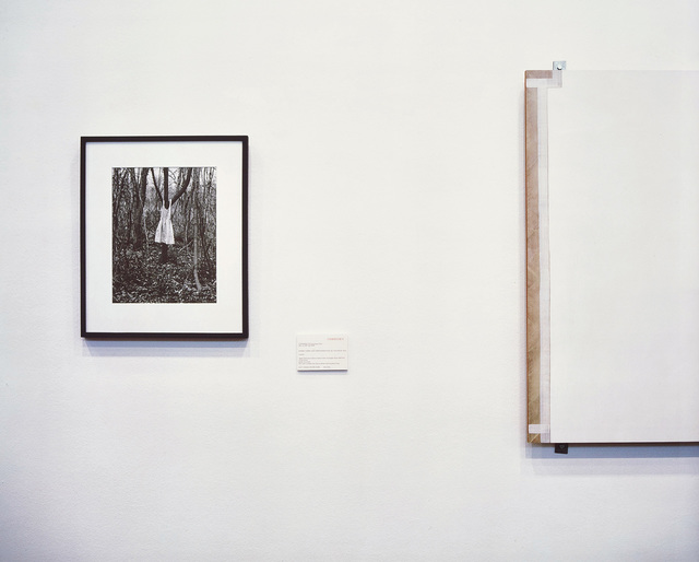 Louise Lawler, 'Photograph, Painting', 2000/2001, Phillips