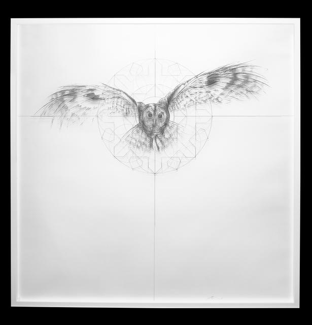 , 'Owl Fractal Star,' 2016, Lawrence Alkin Gallery