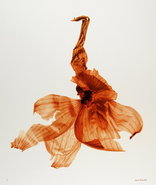 , 'Pelure d'oignon (Onion skin),' 2006, Nailya Alexander Gallery