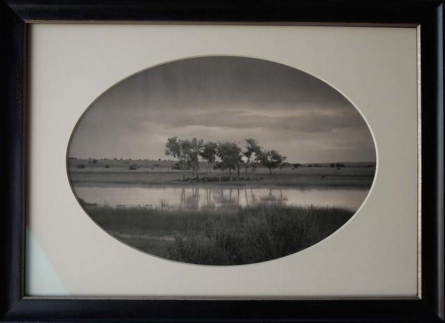 , 'Trees, Pond, New Mexico,' , Etherton Gallery
