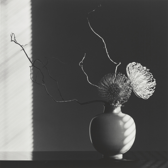 , 'Flower Arrangement,' 1986, J. Paul Getty Museum