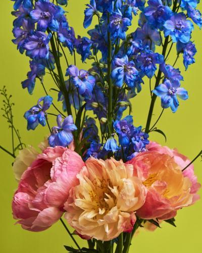 , 'Coral Peonies Four, London,' 2016, Bernheimer Fine Art