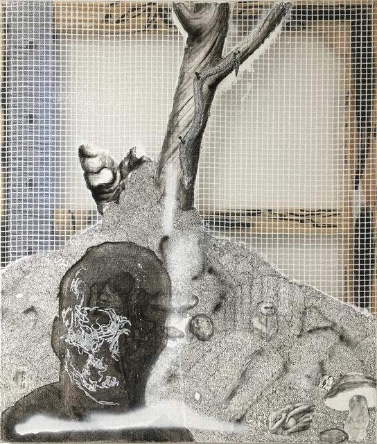, 'Dyp dal III (Martin) ,' 2016, Rod Bianco Gallery