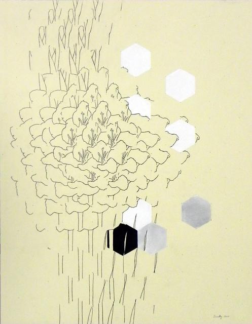 , 'Iris Hexagonal Grid Study,' 2010, Cris Worley Fine Arts