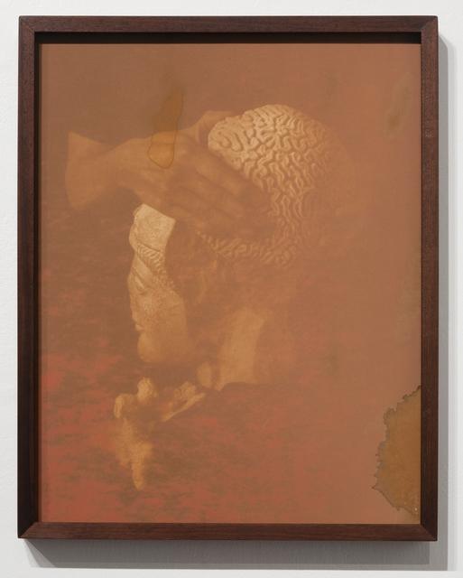 , 'Coral,' 2017, EUQINOM Gallery