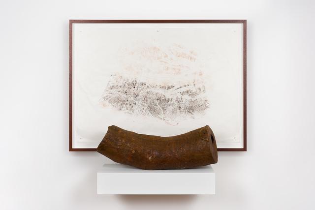 , 'Black wattle,' 2018, Roslyn Oxley9 Gallery