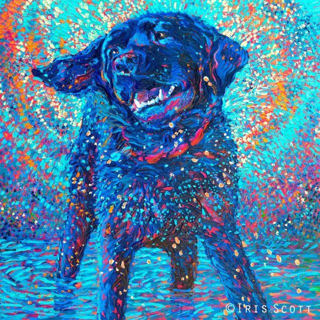 , 'Canines and Color,' 2017, Adelman Fine Art