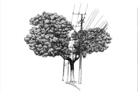 , 'Árvore nº 2,' , Galeria Virgilio