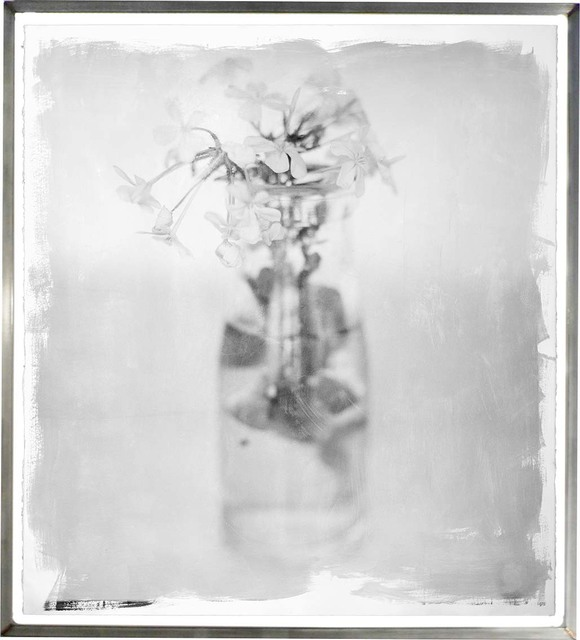 , 'Plumbago Sprig,' 2011, HackelBury Fine Art