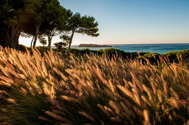 , 'Algarve I,' 2015, Galleri Duerr