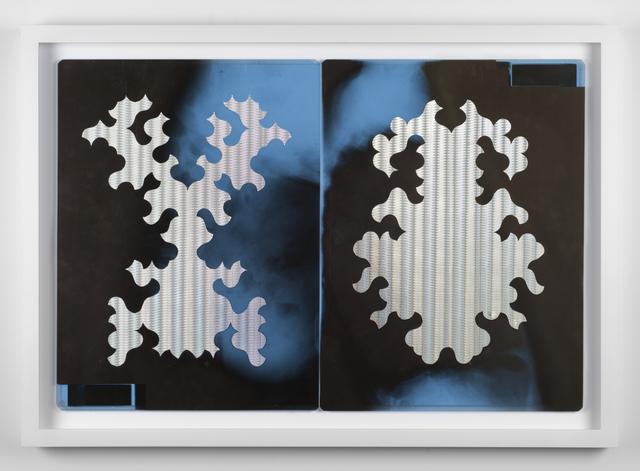 , 'Bicho Raro (L'un est double de l'autre),' 2016, Galerie Laurence Bernard