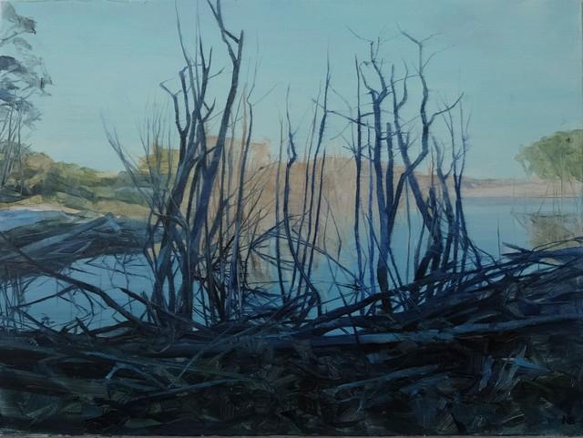 , 'Savage Pond II Study,' 2018, Nanda\Hobbs