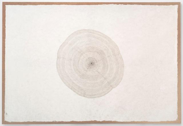 , 'Propagazione 23-05-012,' 2012, Gagosian
