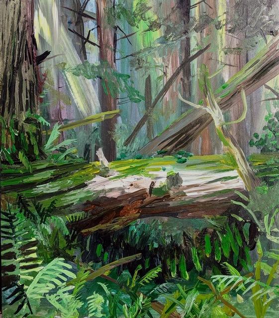 , 'Ferns Tucked Under a Fallen Tree, Redwoods State Park,'  2019, 1969 Gallery