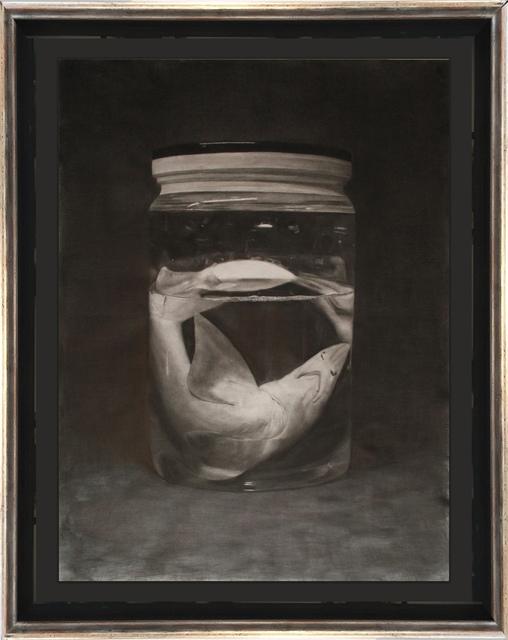 , 'Shark in a Jar,' 2016, ARCADIA CONTEMPORARY