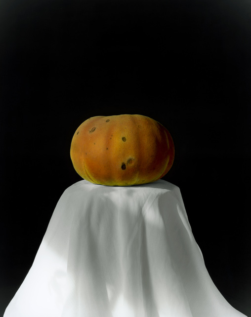 , 'Pumpkin 2008 (2-1) [南瓜 2008 (2-1)],' 2008, Shanghai Gallery of Art