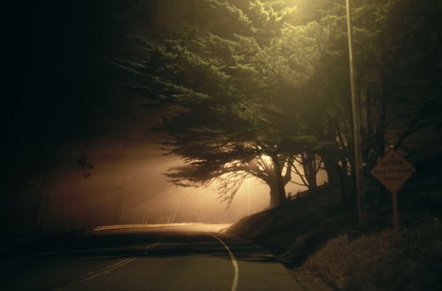 William Farley, 'Tree and Street Light, 2:30 A.M. @ Merchant St, West of the Golden Gate, SF, CA', 2007, Dolby Chadwick Gallery